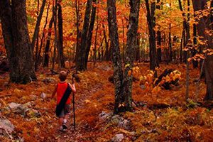 KID-hiking--photo-2